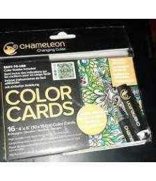 COLOR CARD IMMAGINE A...
